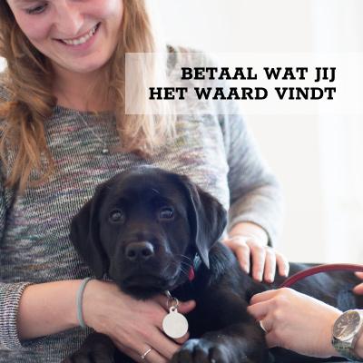 Puppyconsultatiebureau
