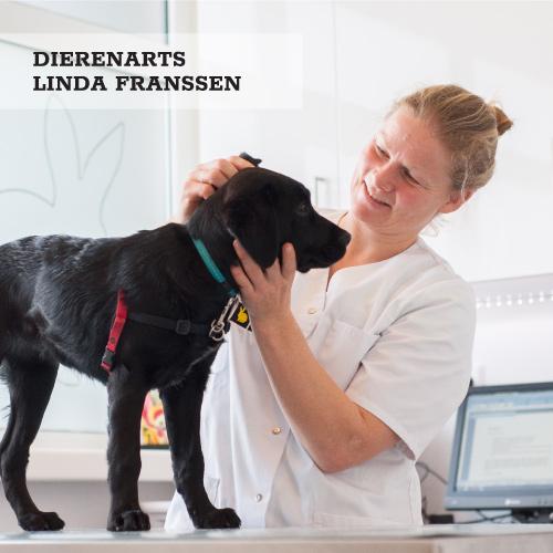 Dierenarts Linda Franssen