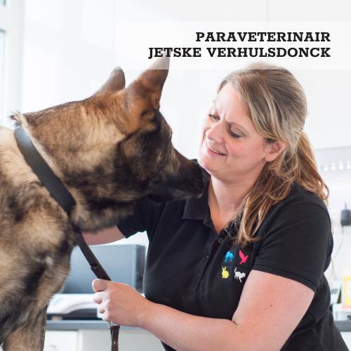 Jetske Verhulsdonck