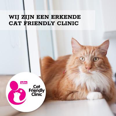 Wij zijn een erkende Cat Friendly Clinic